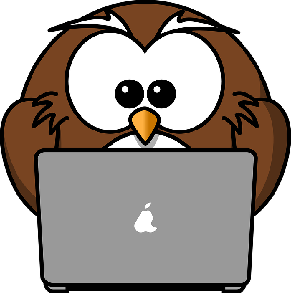 Research Owl